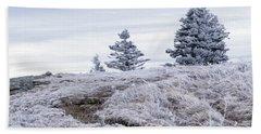 Beach Towel featuring the photograph Appalachian Trail Winter Hike by Serge Skiba