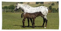 Appaloosa Mare And Foal Beach Towel