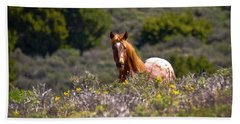 Appaloosa Mustang Horse Beach Towel