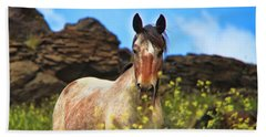 Appaloosa Mustang In The Wild. Beach Towel