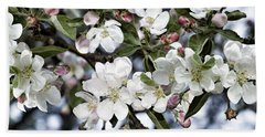 Apple Blossoms Beach Sheet