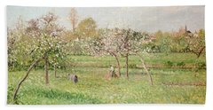 Apple Trees At Gragny Beach Towel