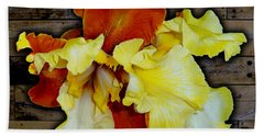 Apricot Iris On Wood Beach Towel by Tara Hutton