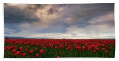 Beach Towel featuring the photograph April Showers by Ryan Manuel
