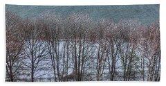 April Snow On Portland Trails Beach Sheet