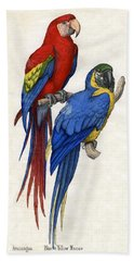 Aracangua And Blue And Yellow Macaw Beach Towel