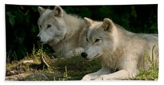 Arctic Wolf Pictures 1268 Beach Towel