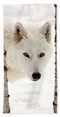 Arctic Wolf Images Beach Towels