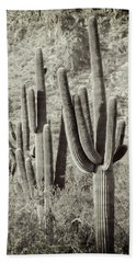 Arizona Desert 2 Beach Towel