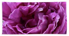 Beach Towel featuring the photograph Arizona Territorial Rose Garden - Purple Dance by Kirt Tisdale