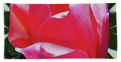 Arlington Tulip Beach Towel