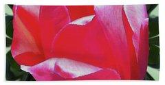 Arlington Tulip Beach Sheet