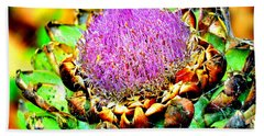 Artichoke Going To Seed  Beach Sheet by Antonia Citrino
