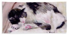 Artist's Cat Sleeping Beach Towel