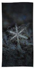 Leaves Of Ice Beach Sheet