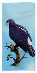 Verreaux's Eagle  Beach Towel