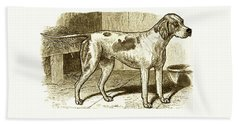 Vintage Sepia German Shorthaired Pointer Beach Sheet
