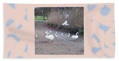 Swans 4 Beach Sheet