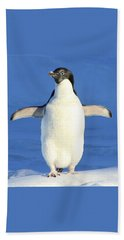 Cold Feet - Penquin In The Snow Beach Towel