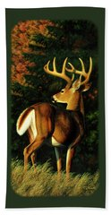 Whitetail Buck - Indecision Beach Towel