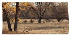 Beach Sheet featuring the photograph Shades Of Autumn by Bill Kesler