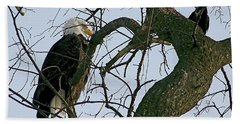 As The Eagle Looks On Beach Sheet by Sue Stefanowicz