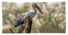 Asian Openbill Beach Towel by Pravine Chester
