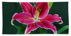 Oriental  Lily Aka Stargazer Beach Towel by Larry Nieland
