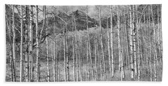 Beach Towel featuring the photograph Aspen Ambience Monochrome by Eric Glaser