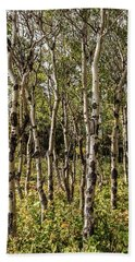 Beach Towel featuring the photograph Aspen Delight At Glacier by Lon Dittrick