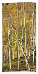 Aspen Forest Beach Sheet