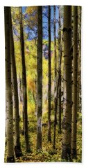 Beach Towel featuring the photograph Aspen Mood - Autumn - Colorful Colorado by Jason Politte