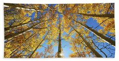 Aspen Tree Canopy 2 Beach Towel