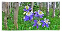 Aspens And Columbines Beach Towel