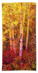 Aspens In Autumn-2 Beach Towel by Nancy Marie Ricketts