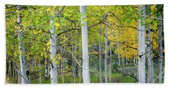 Aspens In Autumn 6 - Santa Fe National Forest New Mexico Beach Sheet
