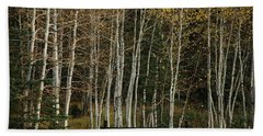 Aspens In The Fall Beach Towel