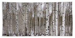 Aspens In Winter - Colorado Beach Towel