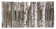 Aspens In Winter Panorama - Colorado Beach Towel
