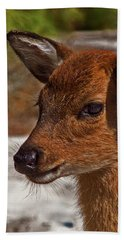 Assateague Island Sika Deer Fawn Beach Towel