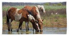 Assateague Ponies Tale Drink Beach Towel