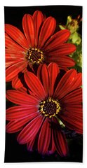 Aster Coming Out Of The Dark Beach Towel