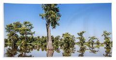 Atchafalaya Cypress Tree Beach Sheet