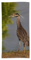 Beach Towel featuring the photograph Attentive Heron by Jean Noren