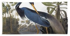 Audubon Heron, 1827 Beach Towel