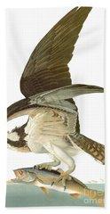 Audubon: Osprey Beach Towel