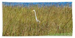 Audubon Park Sighting Beach Towel