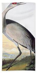 Audubon: Sandhill Crane Beach Towel