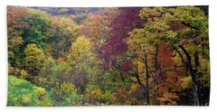 Beach Towel featuring the photograph Autumn Arrives In Brown County - D010020 by Daniel Dempster