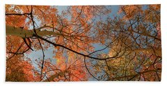 Autumn Aspens In The Sky Beach Sheet